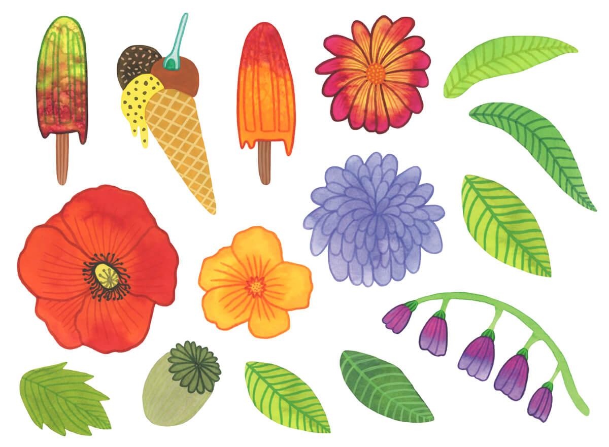 Sanne Bruinsma Illustraties & Vormgeving Drentse Uitmaand campagne K&C Assen 2015 illustraties cultuur evenement kunst bloemen planten ijsjes