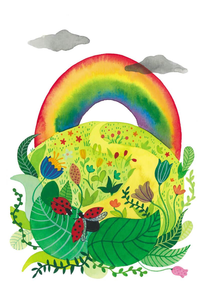 Drenthe Magazine regenboogprovincie acceptatie homo tijdschrift blad regenboog lieveheersbeestjes natuur Drents landschap veldbloemen wandelpad